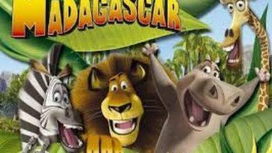 تحميل لعبة مدغشقر أحدث إصدار